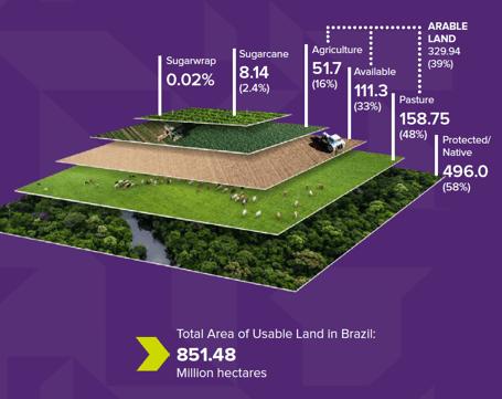 Sugar cane land use